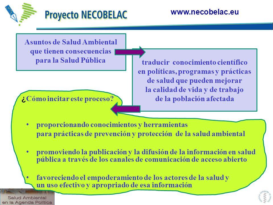 ¿ Cómo incitar este proceso? proporcionando conocimientos y herramientas para prácticas de prevención y protección de la salud ambiental promoviendo l