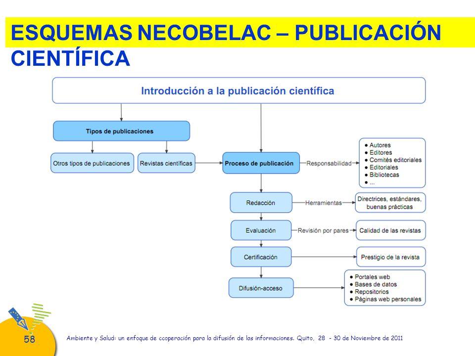 58 Ambiente y Salud: un enfoque de ccoperación para la difusión de las informaciones. Quito, 28 - 30 de Noviembre de 2011 ESQUEMAS NECOBELAC – PUBLICA