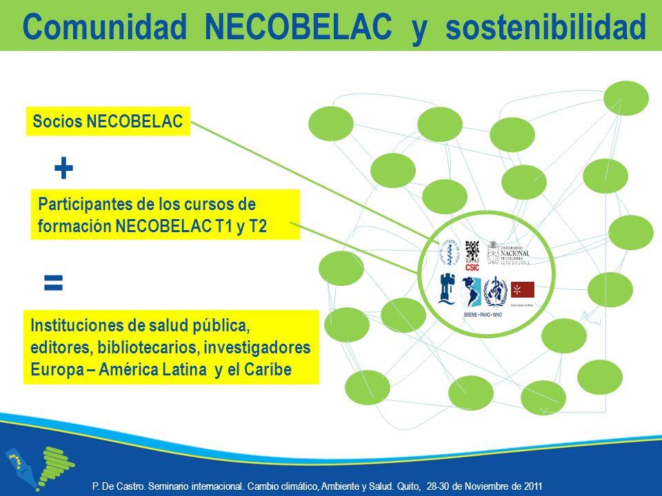 P. De Castro. Seminario internacional. Cambio climático, Ambiente y Salud.