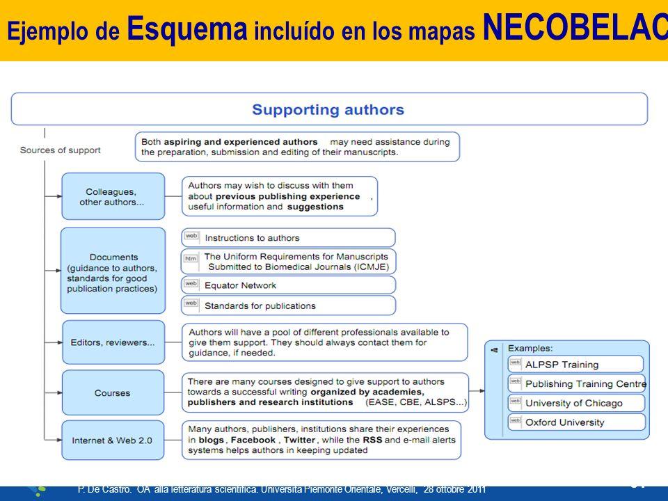 Ejemplo de Esquema incluído en los mapas NECOBELAC P.