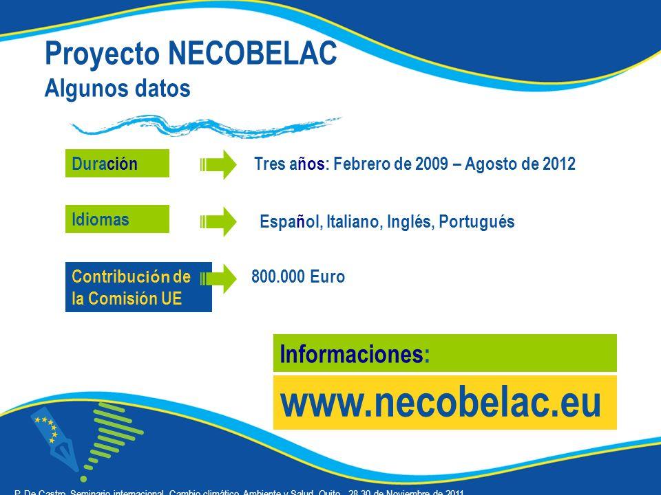 Proyecto NECOBELAC Algunos datos Duración www.necobelac.eu Informaciones: Español, Italiano, Inglés, Portugués 800.000 Euro Tres años: Febrero de 2009 – Agosto de 2012 Idiomas Contribu ción de la Comisión UE P.