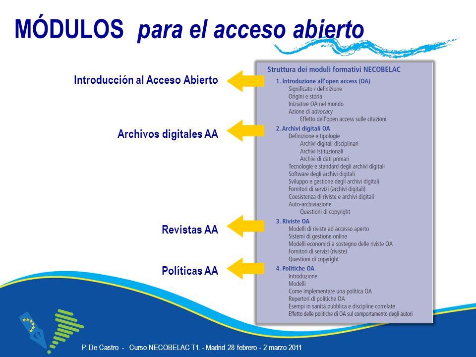 P. De Castro - Curso NECOBELAC T1. - Madrid 28 febrero - 2 marzo 2011 Corso NECOBELAC T1.