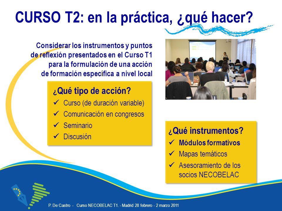 P.De Castro - Curso NECOBELAC T1. - Madrid 28 febrero - 2 marzo 2011 Corso NECOBELAC T1.