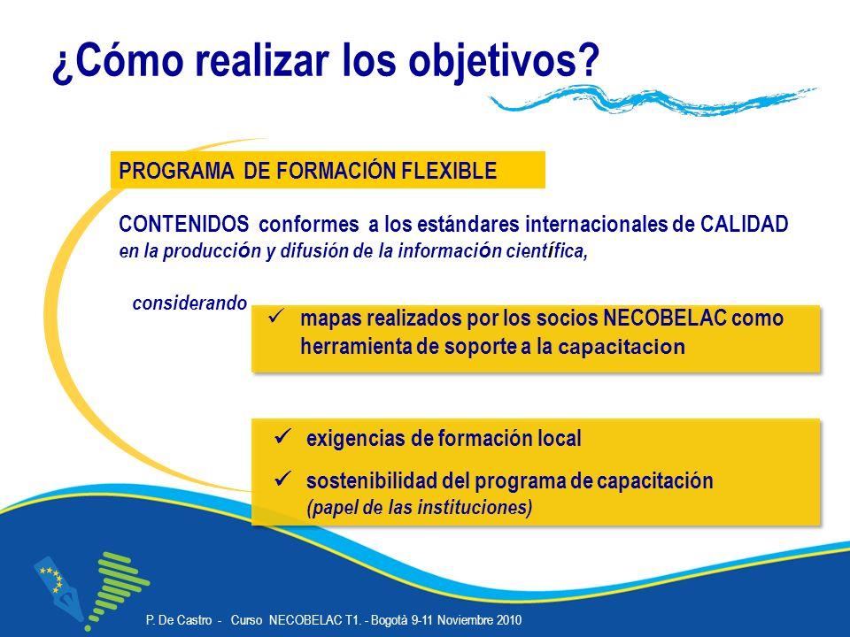 P. De Castro - Curso NECOBELAC T1. - Bogotà 9-11 Noviembre 2010 Corso NECOBELAC T1.
