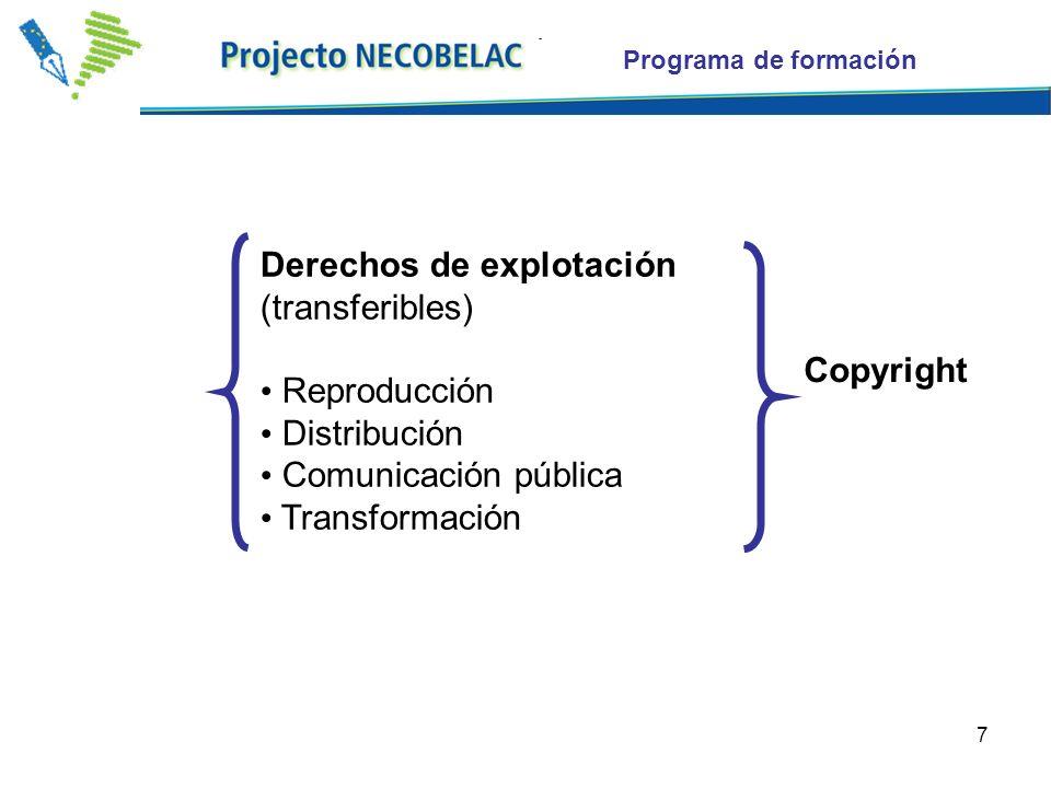 7 Programa de formación Derechos de explotación (transferibles) Reproducción Distribución Comunicación pública Transformación Copyright