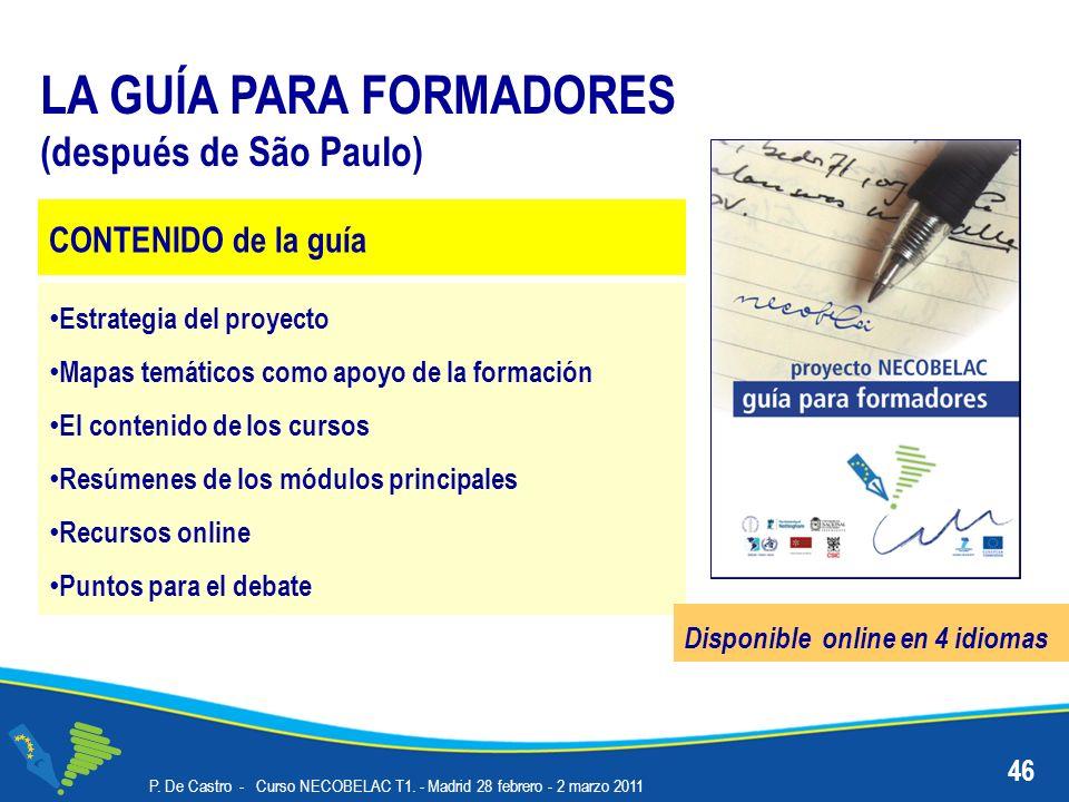 46 LA GUÍA PARA FORMADORES (después de São Paulo) Estrategia del proyecto Mapas temáticos como apoyo de la formación El contenido de los cursos Resúme