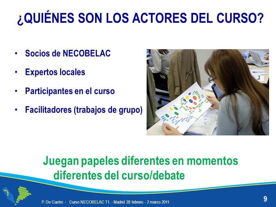 ¿QUIÉNES SON LOS ACTORES DEL CURSO? Socios de NECOBELAC Expertos locales Participantes en el curso Facilitadores (trabajos de grupo) P. De Castro - Cu