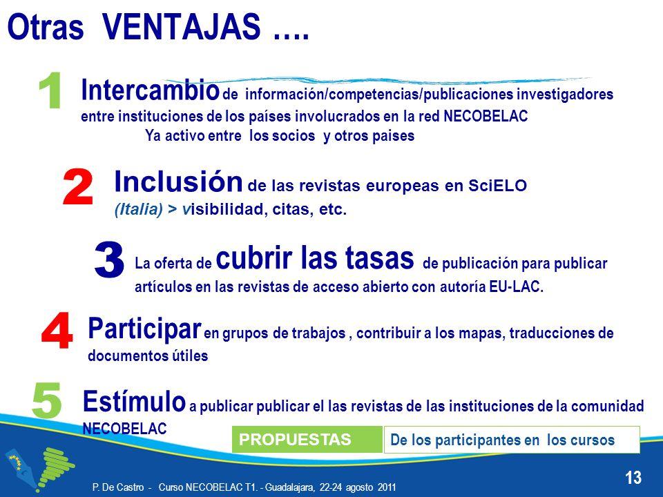 P. De Castro - Curso NECOBELAC T1. - Guadalajara, 22-24 agosto 2011 13 Intercambio de información/competencias/publicaciones investigadores entre inst