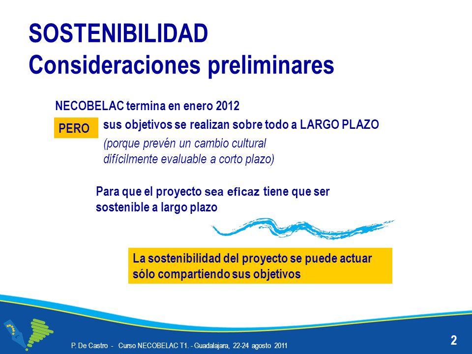 SOSTENIBILIDAD Consideraciones preliminares P. De Castro - Curso NECOBELAC T1. - Guadalajara, 22-24 agosto 2011 2 sus objetivos se realizan sobre todo