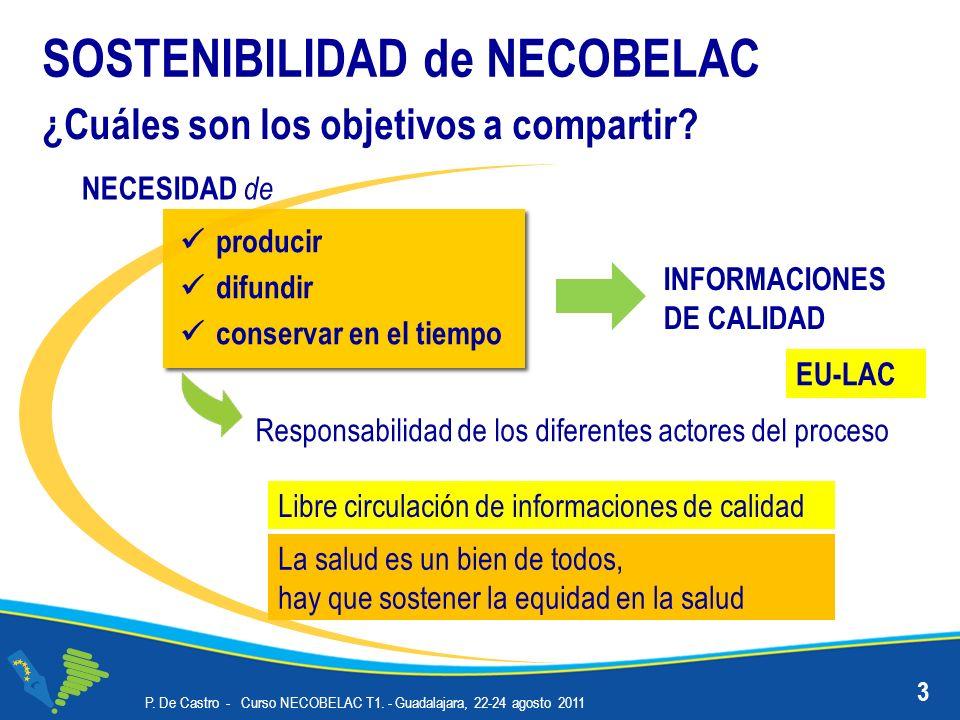 P. De Castro - Curso NECOBELAC T1. - Guadalajara, 22-24 agosto 2011 SOSTENIBILIDAD Y VISIBILIDAD 14
