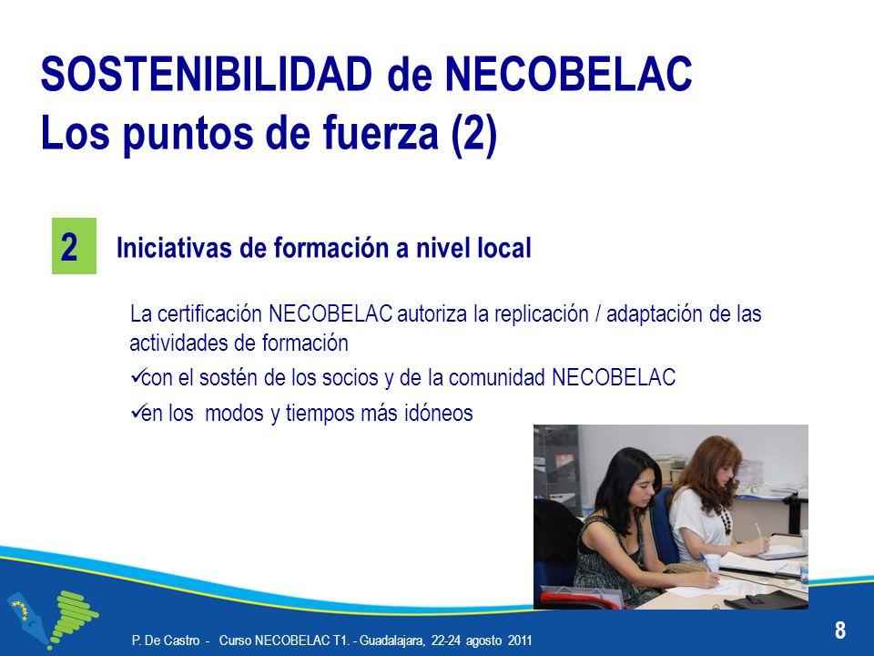 P. De Castro - Curso NECOBELAC T1. - Guadalajara, 22-24 agosto 2011 8 Iniciativas de formación a nivel local SOSTENIBILIDAD de NECOBELAC Los puntos de
