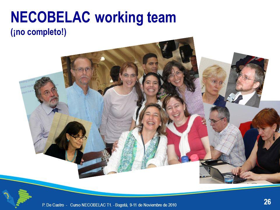 NECOBELAC working team (¡no completo!) P. De Castro - Curso NECOBELAC T1. - Bogotà, 9-11 de Noviembre de 2010 26