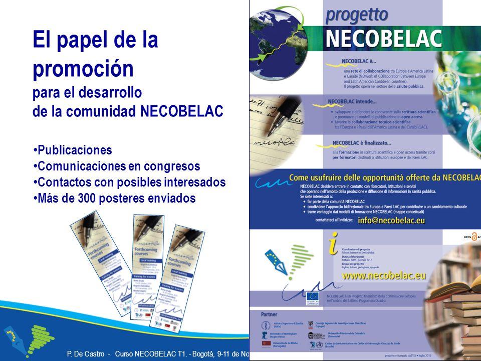 P. De Castro - Curso NECOBELAC T1. - Bogotà, 9-11 de Noviembre de 2010 30 El papel de la promoción para el desarrollo de la comunidad NECOBELAC Public