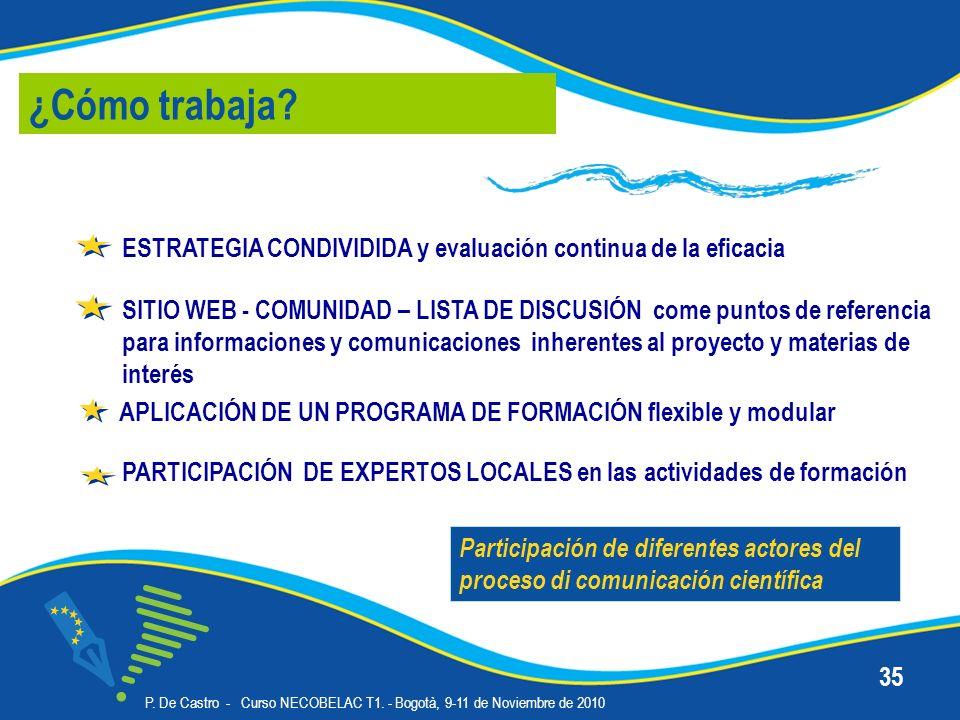 P. De Castro - Curso NECOBELAC T1. - Bogotà, 9-11 de Noviembre de 2010 35 PARTICIPACIÓN DE EXPERTOS LOCALES en las actividades de formación ¿Cómo trab