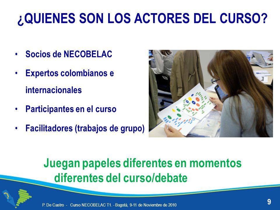 ¿QUIENES SON LOS ACTORES DEL CURSO? Socios de NECOBELAC Expertos colombianos e internacionales Participantes en el curso Facilitadores (trabajos de gr