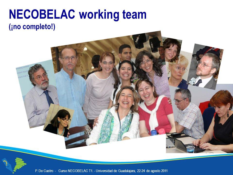 NECOBELAC working team (¡no completo!) P. De Castro - Curso NECOBELAC T1.