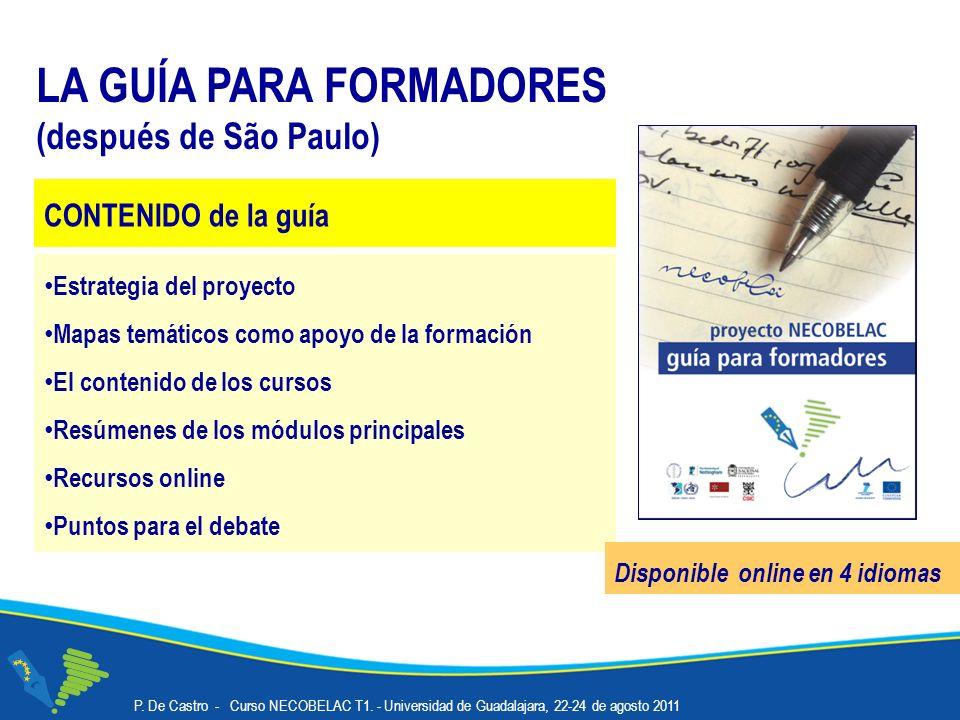 LA GUÍA PARA FORMADORES (después de São Paulo) Estrategia del proyecto Mapas temáticos como apoyo de la formación El contenido de los cursos Resúmenes de los módulos principales Recursos online Puntos para el debate Disponible online en 4 idiomas CONTENIDO de la guía P.
