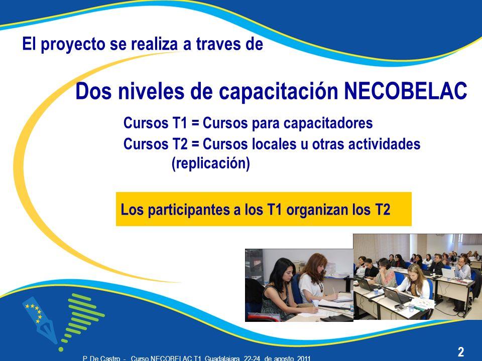 P. De Castro - Curso NECOBELAC T1. Guadalajara, 22-24 de agosto 2011 Dos niveles de capacitación NECOBELAC Cursos T1 = Cursos para capacitadores Curso