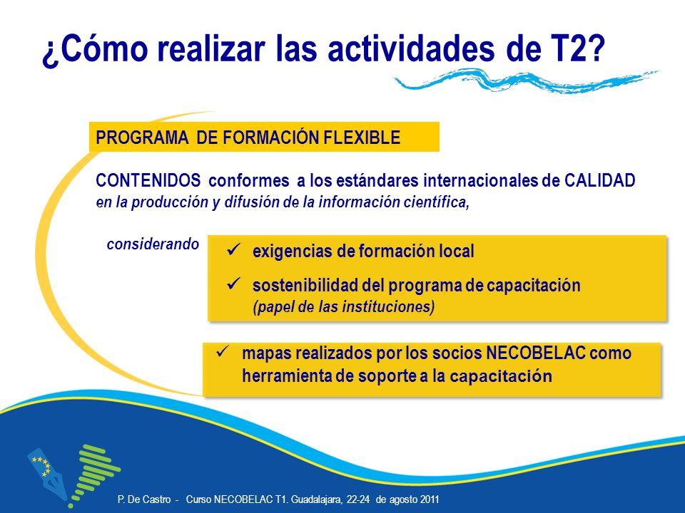 P.De Castro - Curso NECOBELAC T1. Guadalajara, 22-24 de agosto 2011 Corso NECOBELAC T1.