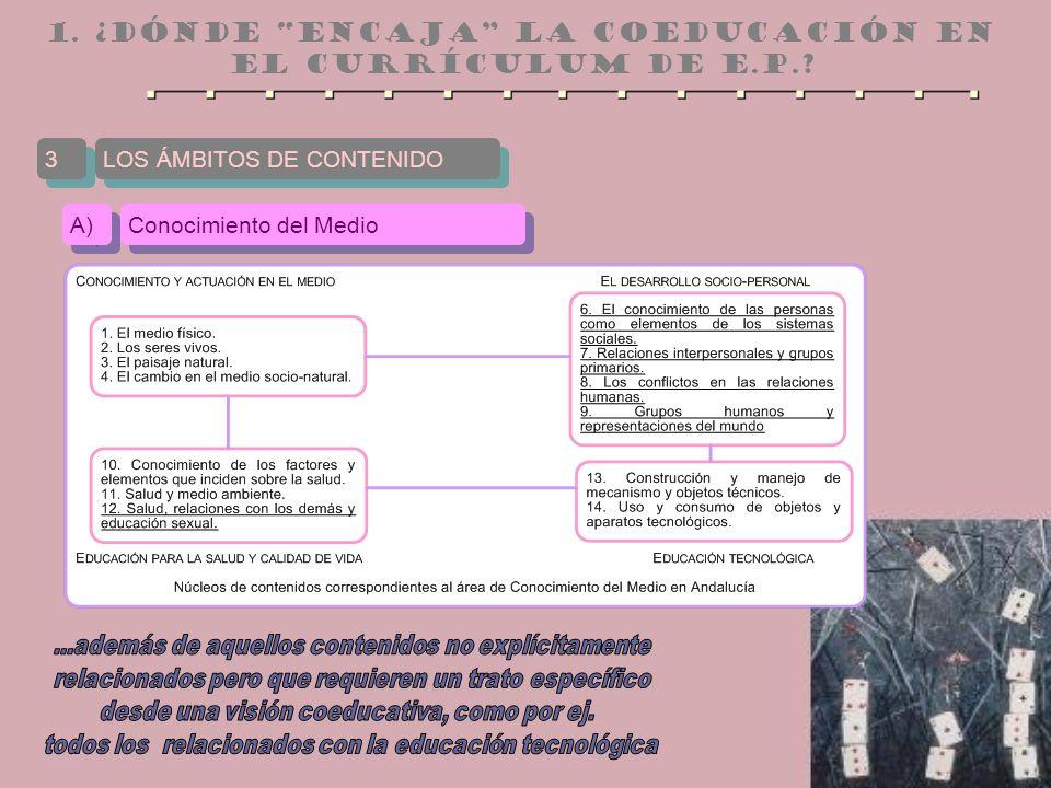1. ¿dónde encaja la Coeducación en el currículum de e.P..