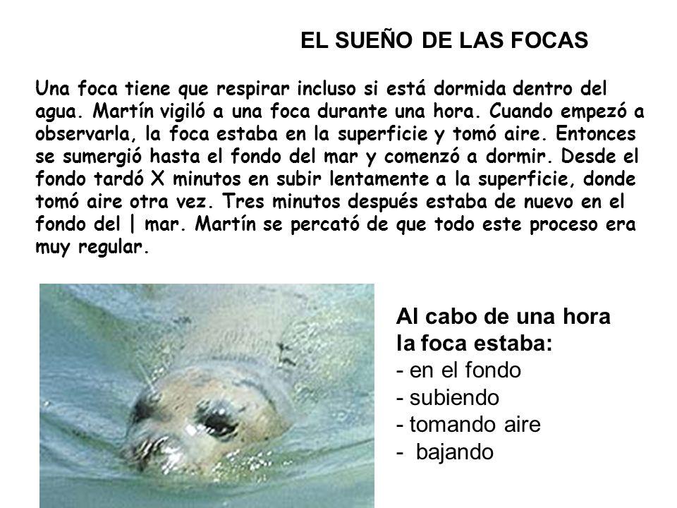 Una foca tiene que respirar incluso si está dormida dentro del agua.