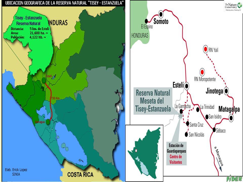 INTRODUCCION En el año 2001 FIDER inicia el comanejo de la Reserva Natural Tisey- Estanzuela la USAID/MARENA/TNC apoyo en el proyecto de Protección y Conservación del sistema de bosque pino-encino, siendo necesario la consolidación de la organización comunitaria para crear alternativas económicas sustentable y compatibles con el medio ambiente, a través del apoyo de fondo revolvente (micro negocios).