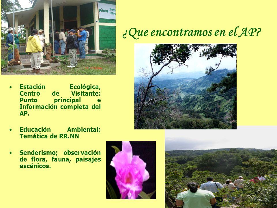 ¿Que encontramos en el AP? Estación Ecológica, Centro de Visitante: Punto principal e Información completa del AP. Educación Ambiental; Temática de RR