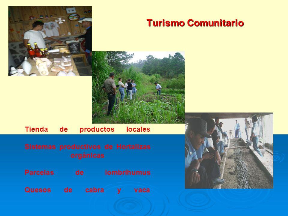 Turismo Comunitario Tienda de productos locales Sistemas productivos de Hortalizas orgánicas Parcelas de lombrihumus Quesos de cabra y vaca