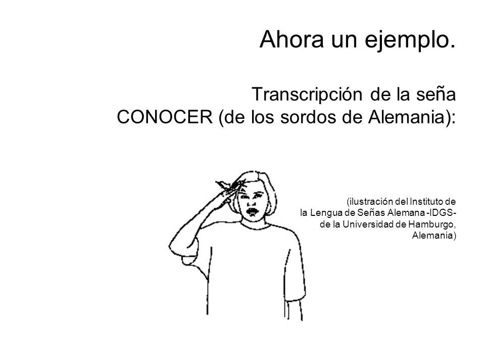 Ahora un ejemplo. Transcripción de la se ñ a CONOCER (de los sordos de Alemania): (ilustración del Instituto de la Lengua de Se ñ as Alemana -IDGS- de