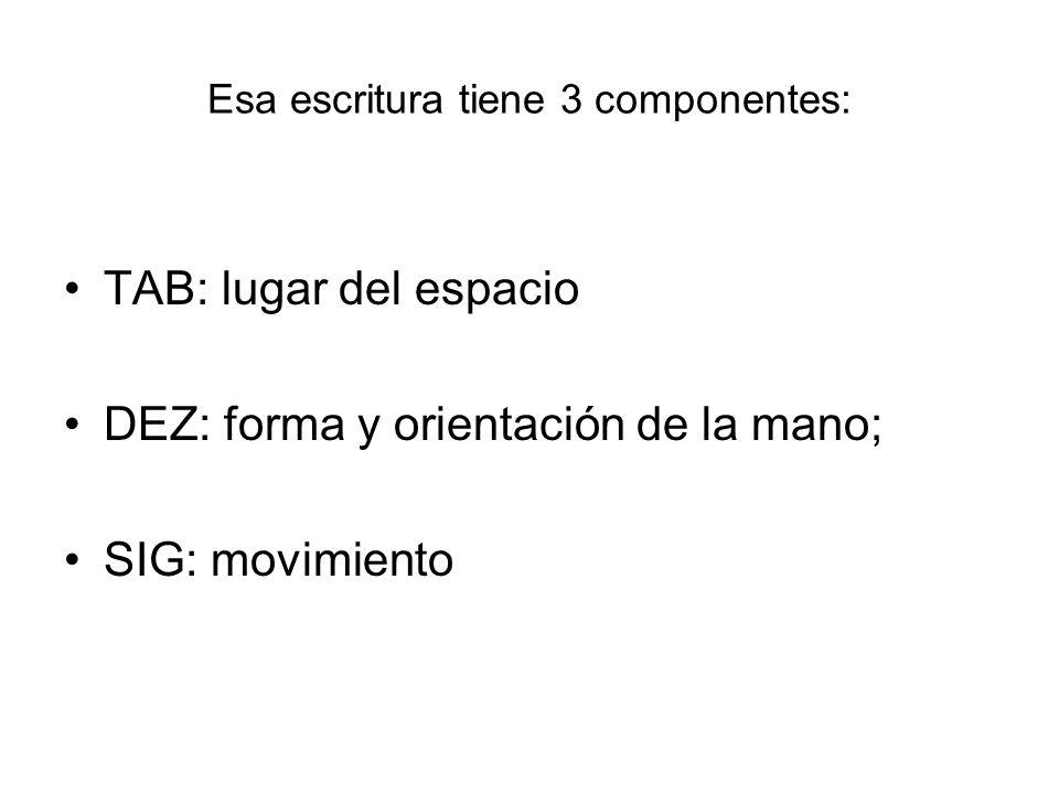 Esa escritura tiene 3 componentes: TAB: lugar del espacio DEZ: forma y orientación de la mano; SIG: movimiento