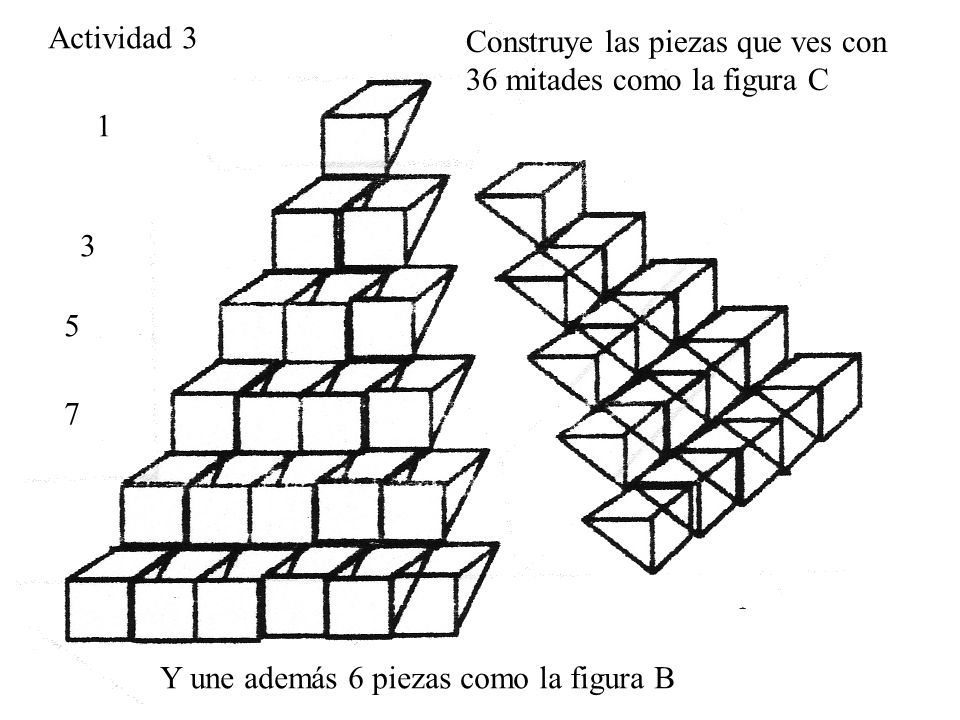 Actividad 3 Construye las piezas que ves con 36 mitades como la figura C Y une además 6 piezas como la figura B 1 3 5 7