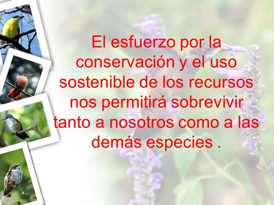 El esfuerzo por la conservación y el uso sostenible de los recursos nos permitirá sobrevivir tanto a nosotros como a las demás especies.