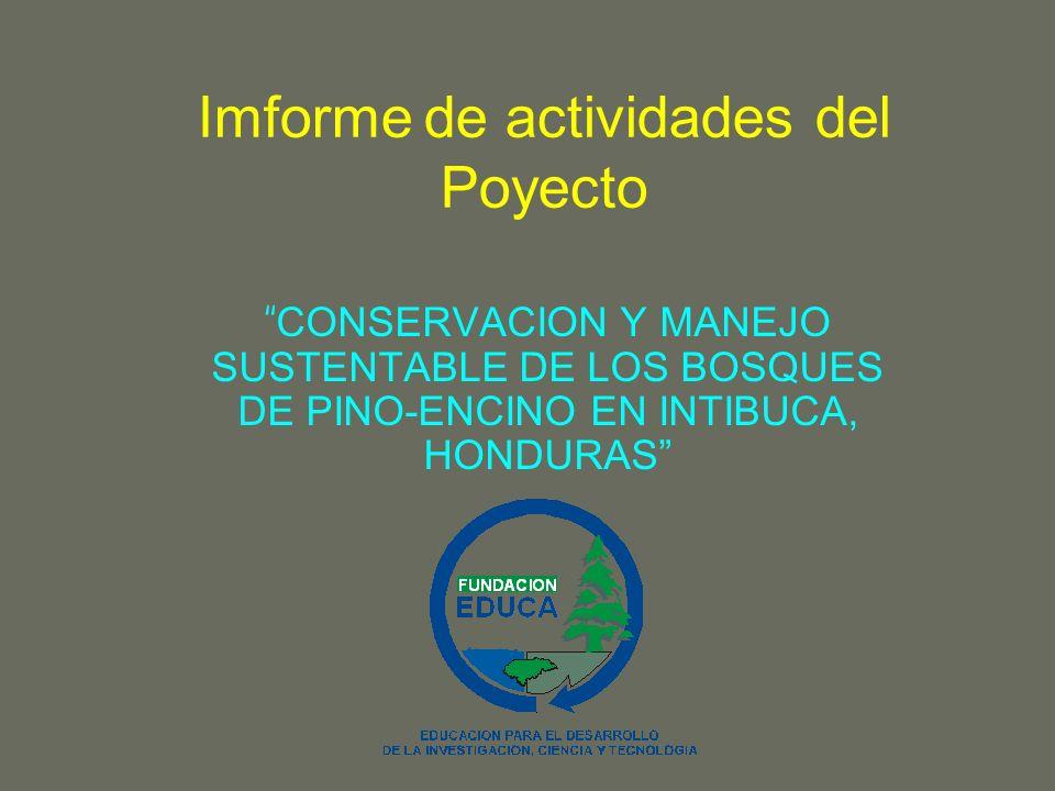 Imforme de actividades del Poyecto CONSERVACION Y MANEJO SUSTENTABLE DE LOS BOSQUES DE PINO-ENCINO EN INTIBUCA, HONDURAS