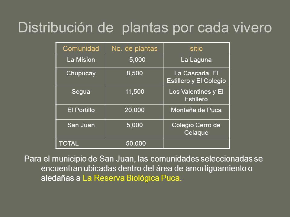 Distribución de plantas por cada vivero Para el municipio de San Juan, las comunidades seleccionadas se encuentran ubicadas dentro del área de amortig
