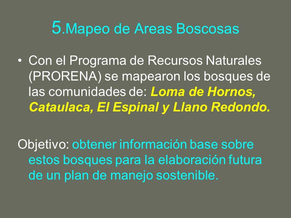 5.Mapeo de Areas Boscosas Con el Programa de Recursos Naturales (PRORENA) se mapearon los bosques de las comunidades de: Loma de Hornos, Cataulaca, El