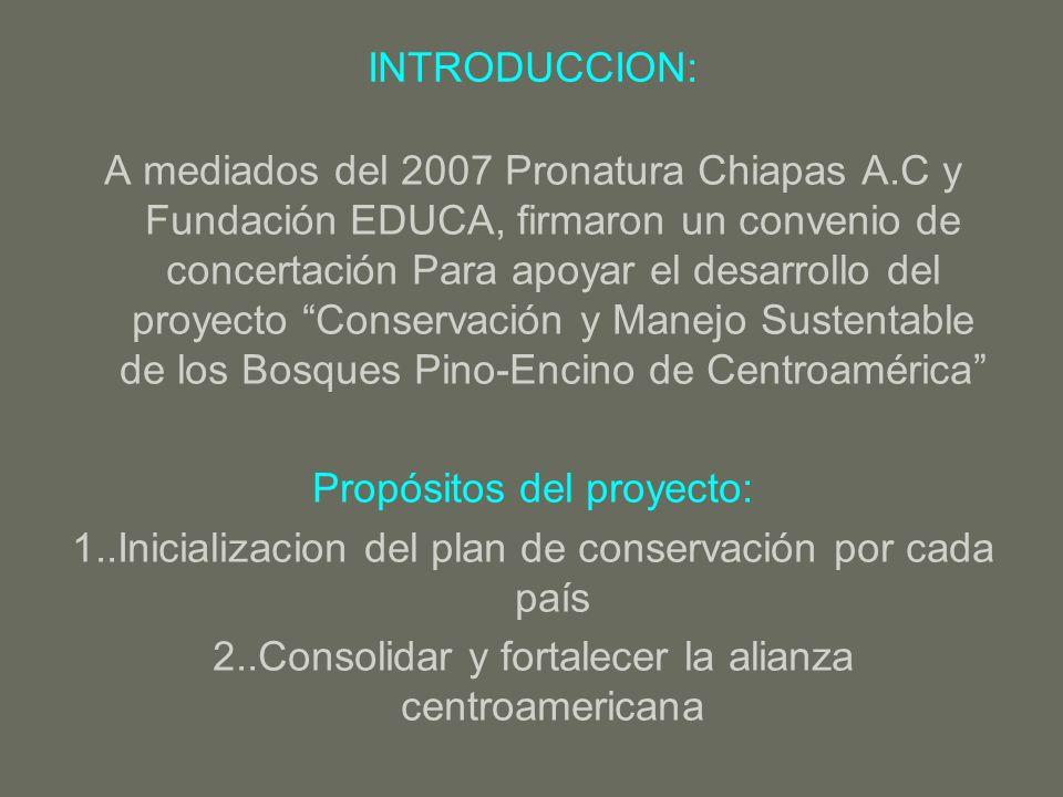 INTRODUCCION: A mediados del 2007 Pronatura Chiapas A.C y Fundación EDUCA, firmaron un convenio de concertación Para apoyar el desarrollo del proyecto