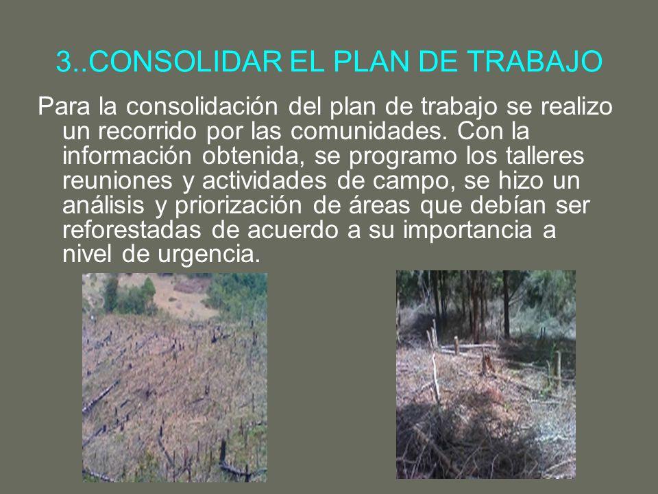 3..CONSOLIDAR EL PLAN DE TRABAJO Para la consolidación del plan de trabajo se realizo un recorrido por las comunidades. Con la información obtenida, s
