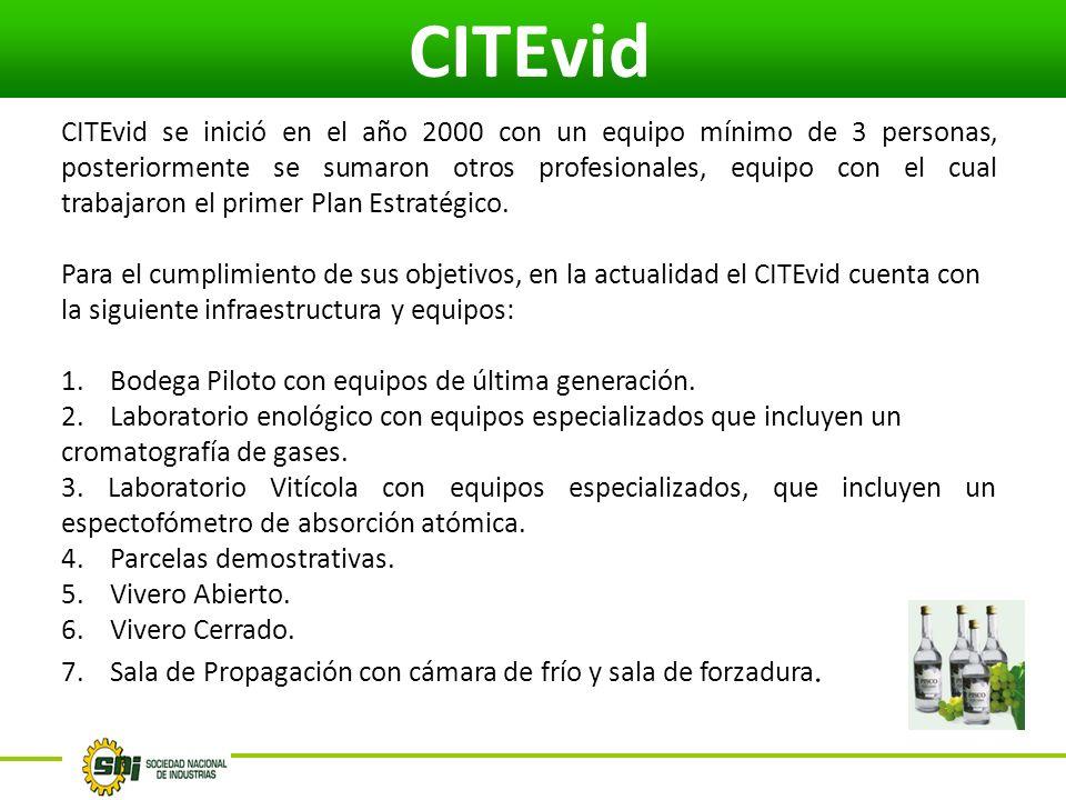 CITEvid CITEvid se inició en el año 2000 con un equipo mínimo de 3 personas, posteriormente se sumaron otros profesionales, equipo con el cual trabajaron el primer Plan Estratégico.