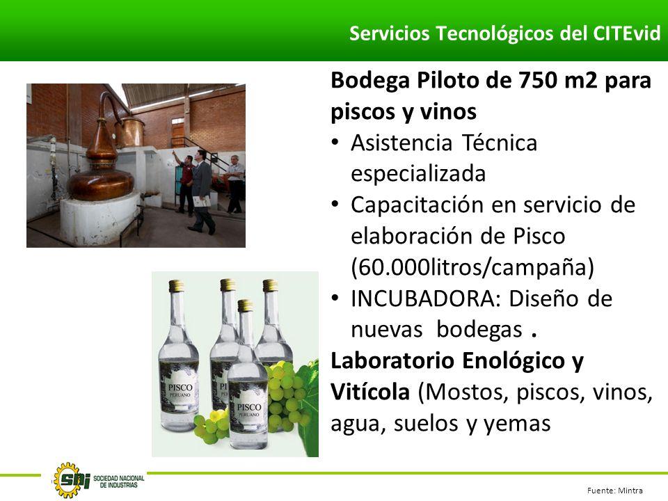 Fuente: Mintra Bodega Piloto de 750 m2 para piscos y vinos Asistencia Técnica especializada Capacitación en servicio de elaboración de Pisco (60.000litros/campaña) INCUBADORA: Diseño de nuevas bodegas.