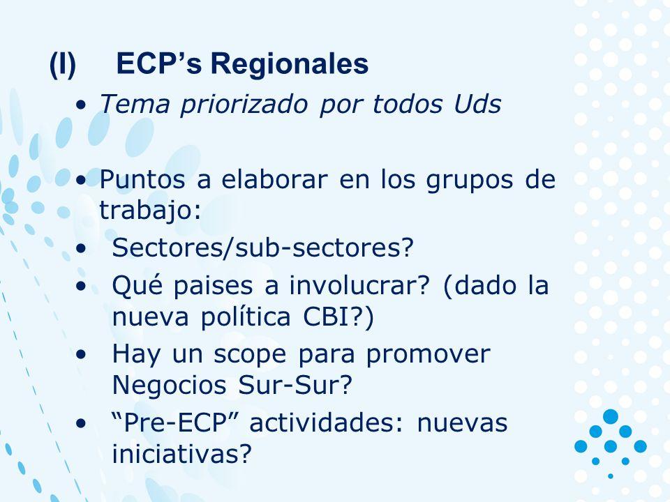Tema priorizado por todos Uds Puntos a elaborar en los grupos de trabajo: Sectores/sub-sectores.
