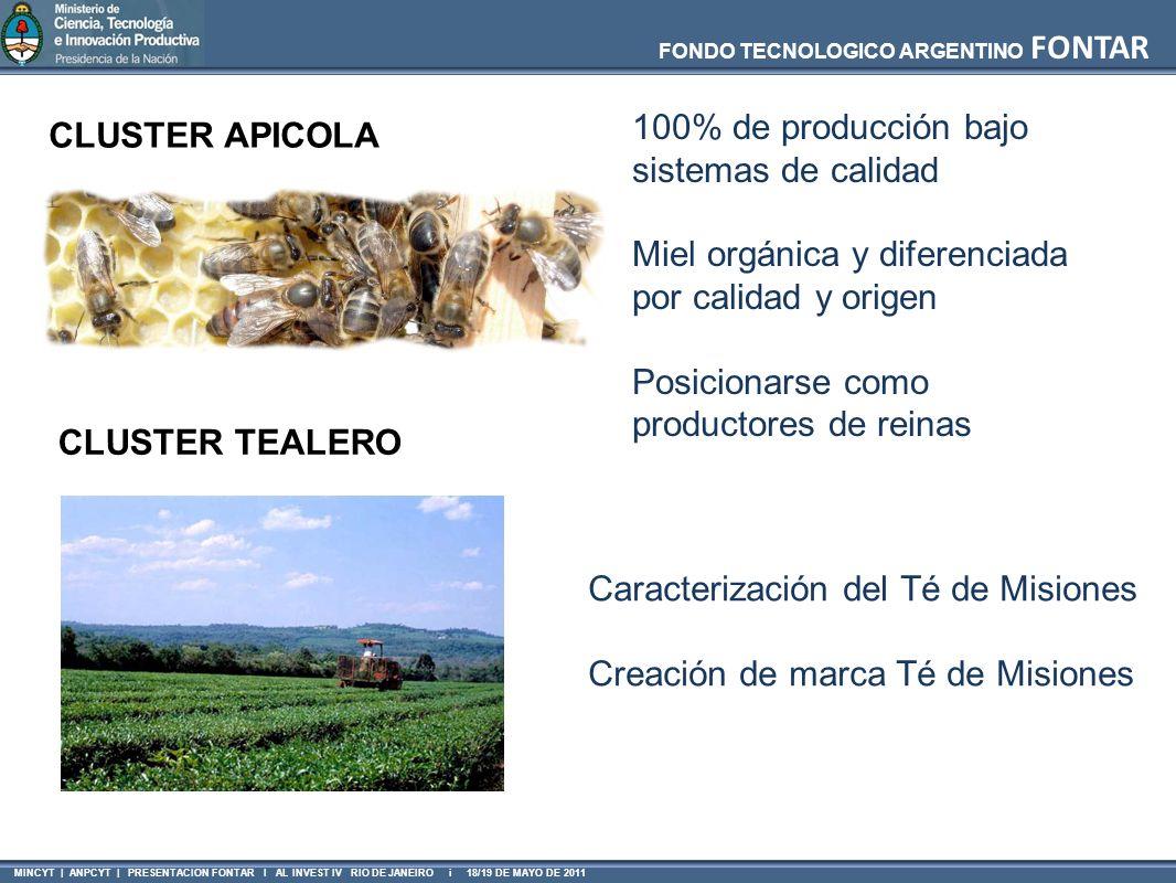 FONDO TECNOLOGICO ARGENTINO FONTAR MINCYT | ANPCYT | PRESENTACION FONTAR I AL INVEST IV RIO DE JANEIRO i 18/19 DE MAYO DE 2011 CLUSTER APICOLA 100% de