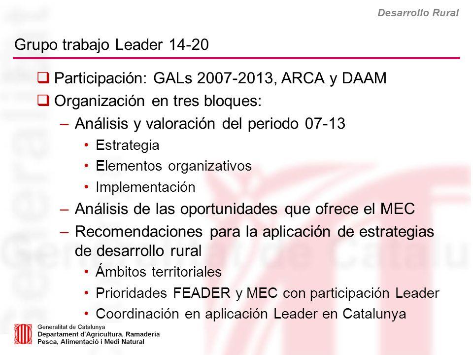 Grupo trabajo Leader 14-20 Desarrollo Rural Participación: GALs 2007-2013, ARCA y DAAM Organización en tres bloques: –Análisis y valoración del period