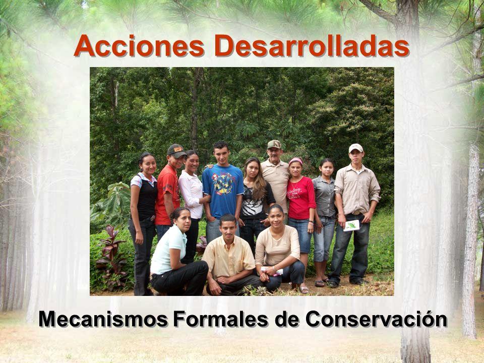 Acciones Desarrolladas Mecanismos Formales de Conservación