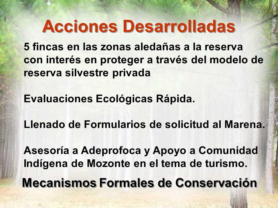 Acciones Desarrolladas Mecanismos Formales de Conservación 5 fincas en las zonas aledañas a la reserva con interés en proteger a través del modelo de