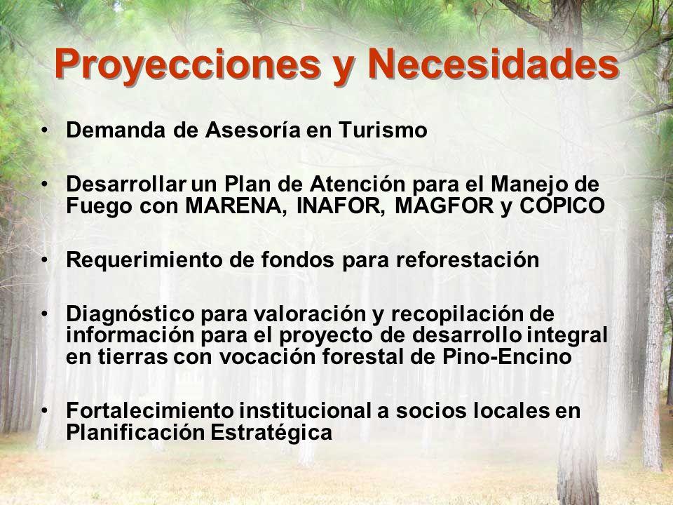 Proyecciones y Necesidades Demanda de Asesoría en Turismo Desarrollar un Plan de Atención para el Manejo de Fuego con MARENA, INAFOR, MAGFOR y COPICO