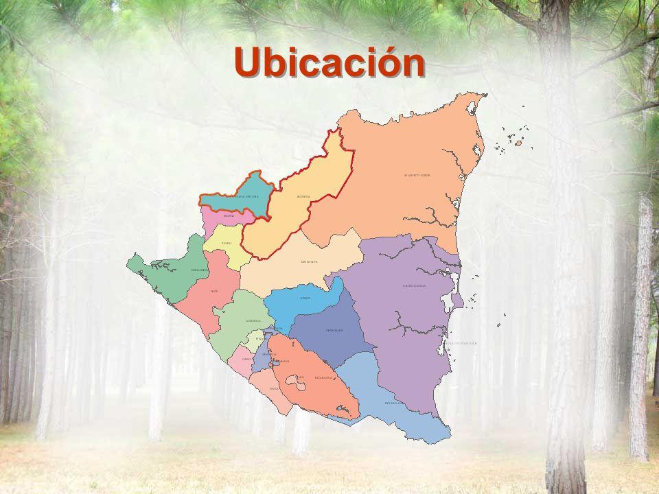 Acciones Desarrolladas Intercambio en Gualaco, Honduras