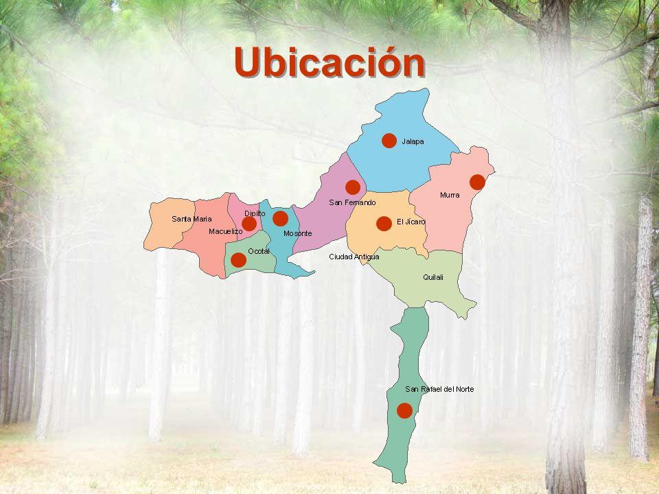 Contexto Veda nacional sobre especies maderables Decreto de 15 Km.