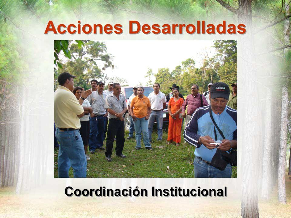 Acciones Desarrolladas Coordinación Institucional COPICO: Corporación para la Acción Conjunta de Dueños y Dueñas de Bosques de Las Segovias ADEPROFOCA: Asociación de Productores Forestales de Dipilto APROFOSC : Asociación de Productores Forestales de Santa Clara