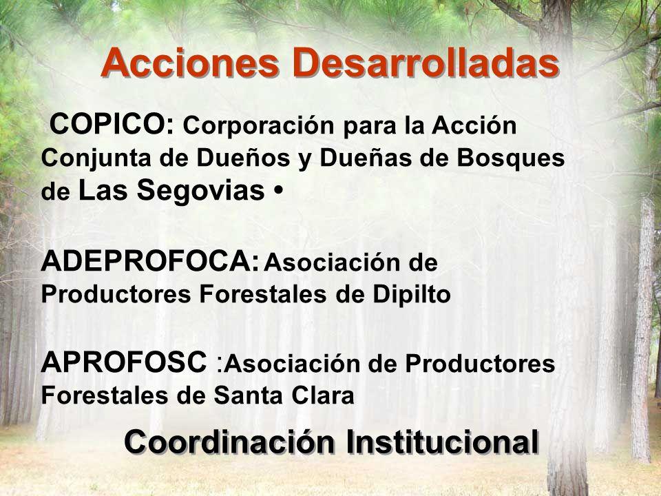 Acciones Desarrolladas Coordinación Institucional Centro Vocacional de Nueva Segovia Pueblo Indígena de Mosonte Productores de Santa Clara, Jícaro y Murra PROCOCER Cooperativa de Servicios Múltiples de Productores Orgánicos de Nueva Segovia
