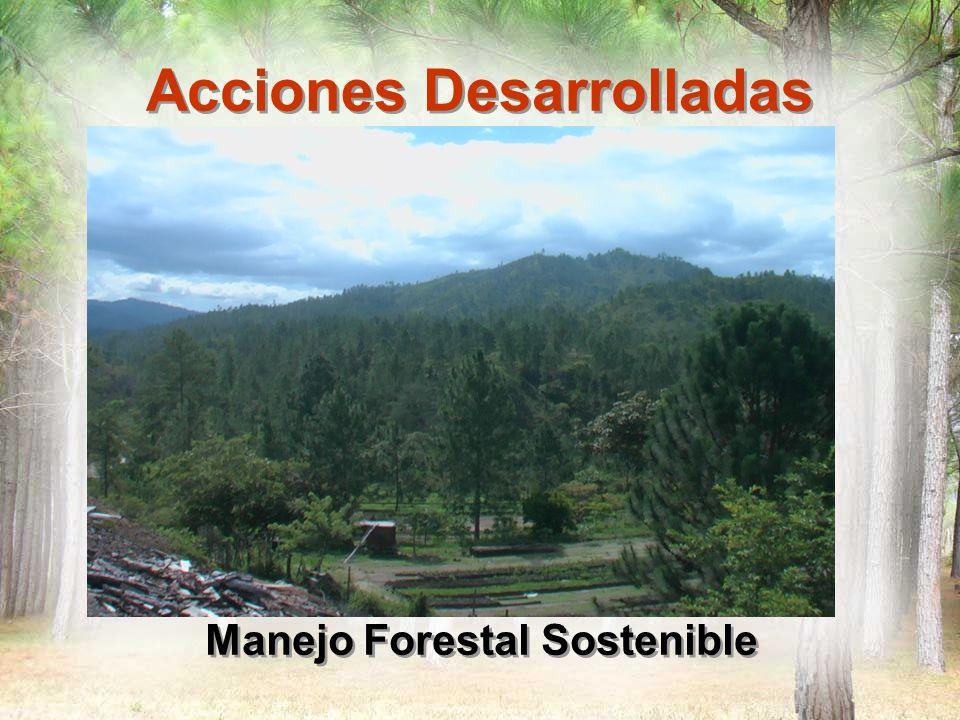 Acciones Desarrolladas Manejo Forestal Sostenible Promoción de modelo de manejo silvicultura.